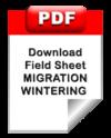Pdf_protocole_migration_en